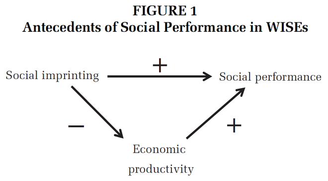 social performance paradox
